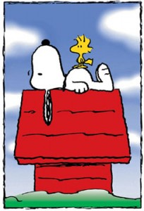 Snoopy_doghouse-1-
